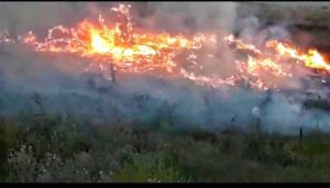 Negev Communities on Fire